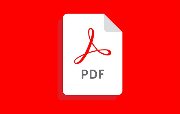 Image showing a PDF file